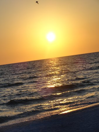 JW Marriott Marco Island Beach Resort: Beautiful beaches and sunsets