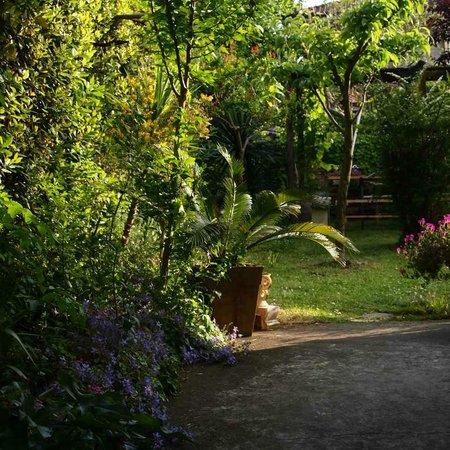 Casa Cambini: giardino