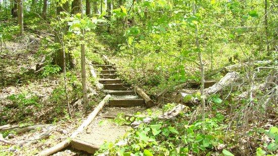Saunders Springs Nature Preserve  |  North Wilson Road, Radcliff, KY 40160