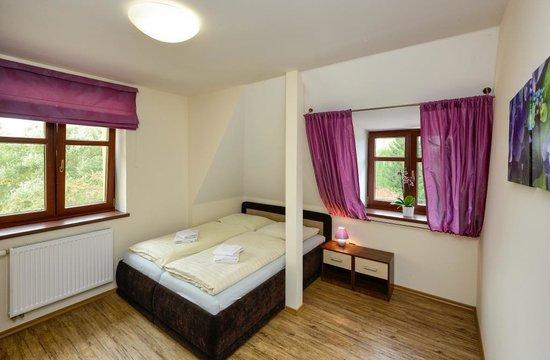 Apartmany Na Seniku : Purple one bedroom apartment