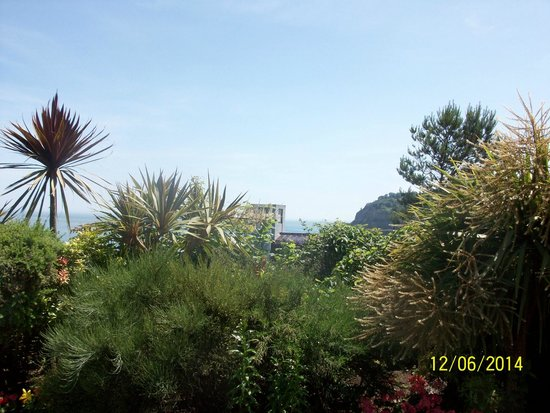Deck Tea Gardens at Carlton Hotel: view of the lift going down to the beach