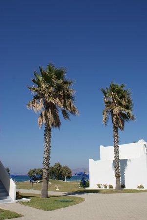 The Aeolos Beach Hotel: Hotelanlage mit Bungalos