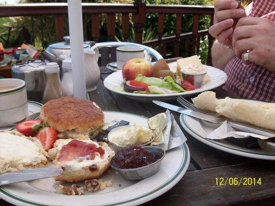 Deck Tea Gardens at Carlton Hotel: Our meal