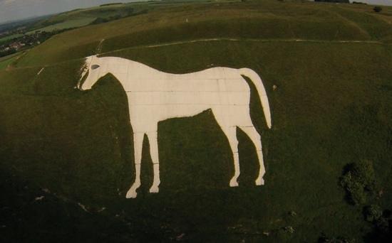 Westbury White Horse: the chalk horse