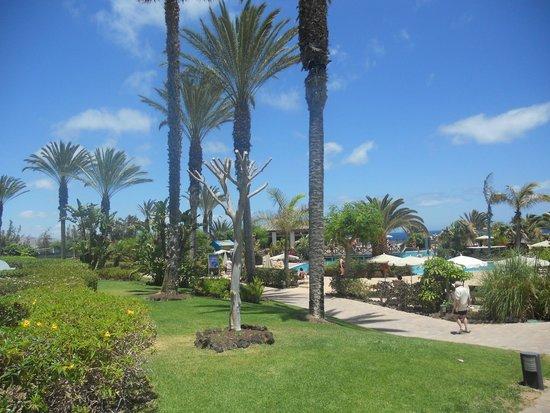 Hotel R2 Pajara Beach : Piscine
