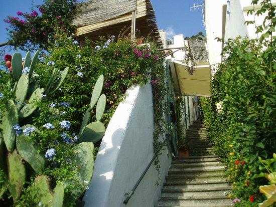 Villa Rosa: ホテルの入り口までは外階段で