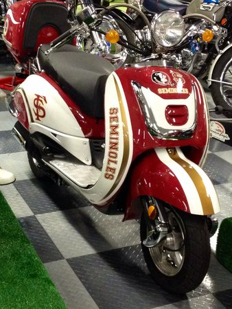 Tallahassee Antique Car Museum: FSU