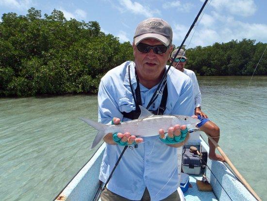 Blue Tang Inn: Bonefish caught on fly rod