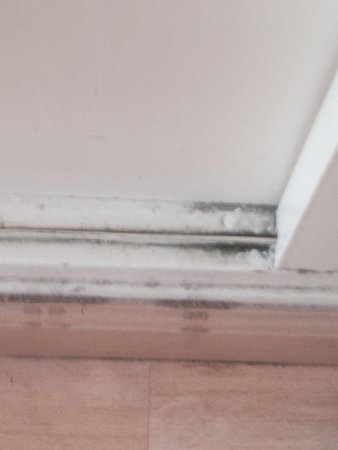 Hotel Goya: Dirty sliding wardrobe doors.