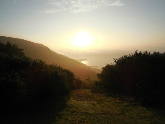 Hastings Country Park: The ealy morning sun reflects off the English Channel, Warren Glen
