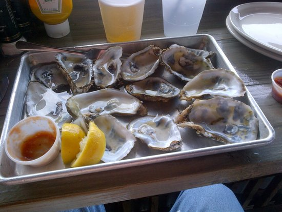 The Salty Pelican Bar & Grill: oysters after