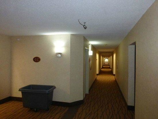 Sleep Inn: We like the open feeling to the hallway