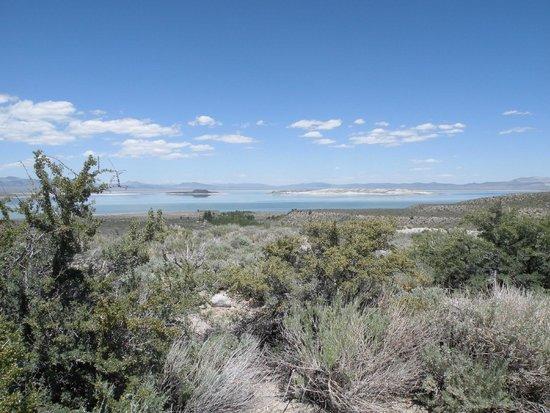 Mono Basin Scenic Area Visitor Center: Mono Lake looking at islands