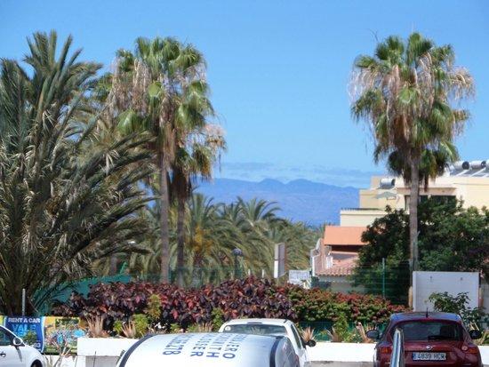 Hovima Santa Maria : vista dalla camera