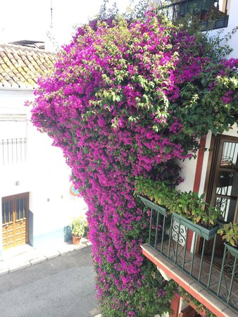 La Villa Marbella: It's not the easiest venue to find in Marbella's narrow lanes. Look for the beautiful purple flo
