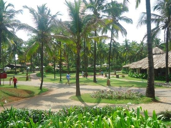 Taj Holiday Village Resort & Spa: well maintained lawns