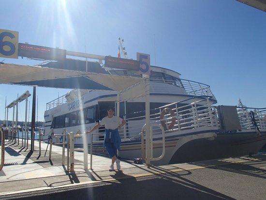 Îles de Lérins : Ferry