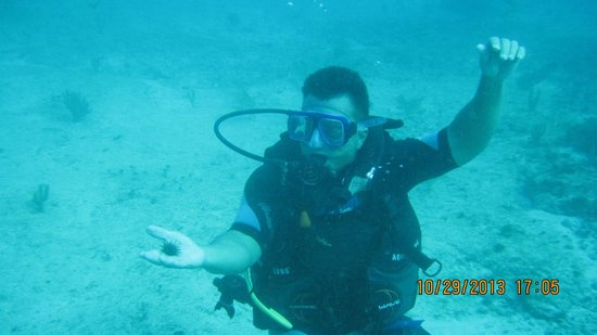 Scuba Diving Cancun : My buddy, Dave diving for the first time!