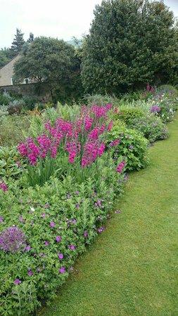 Paradise House B&B: Beautiful gardens