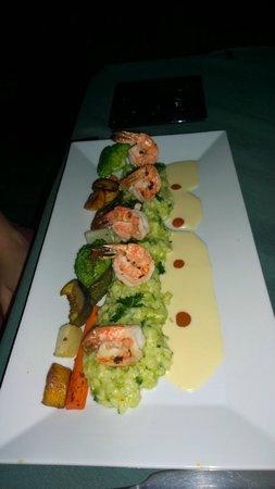 Rainforest Hideaway : Shrimps
