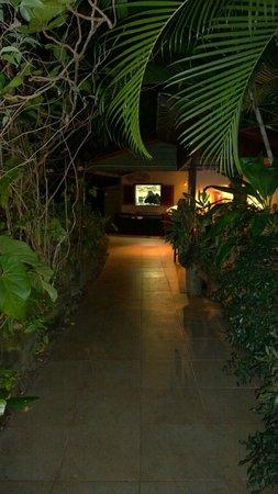 Rainforest Hideaway : Walkway