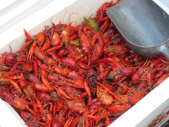 House of the Rising Sun Bed and Breakfast: Crawfish Boil