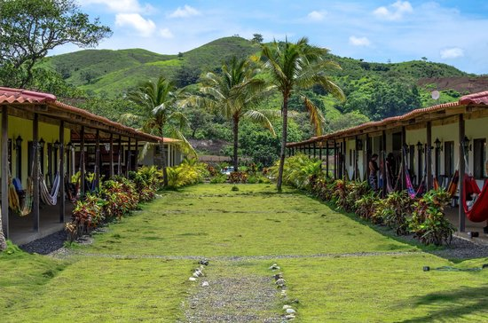 Beach Break Surf Camp and Hotel Playa Venao: Green and lush