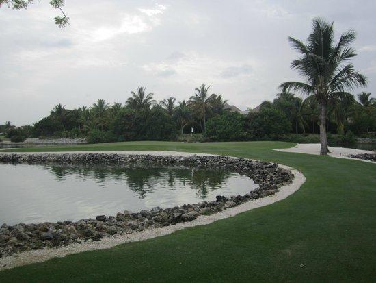La Cana Golf Course: Arrecife - Island par 3