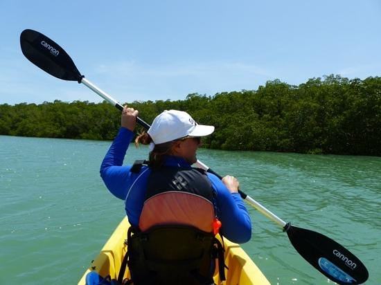 Everglades Area Tours: everglades kayaking