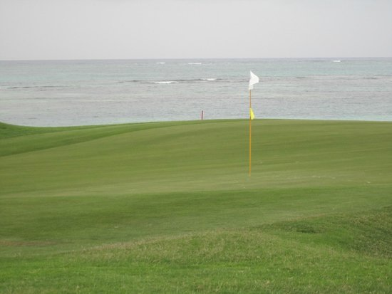 La Cana Golf Course : Arrecife - #9 green