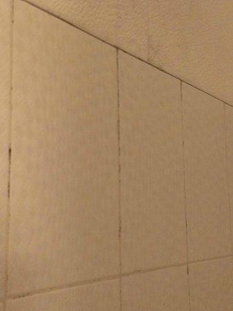 Hotel du Centre: Carreaux de la douche