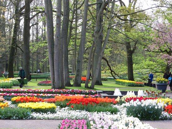 Keukenhof: Lovely Gardens