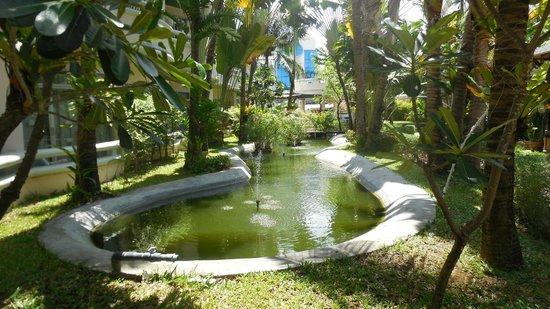 Chaba Samui Resort : территория