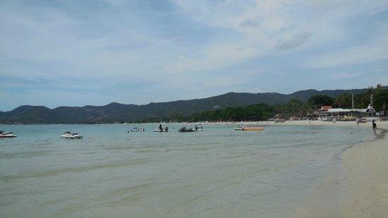 Chaba Samui Resort : пляж