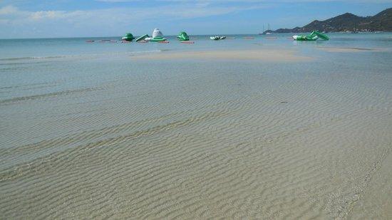 Chaba Samui Resort: пляж
