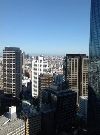 Hilton Tokyo: view from our hotl room 33rd floor up!