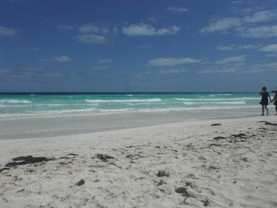 Iberostar Mojito: Beach