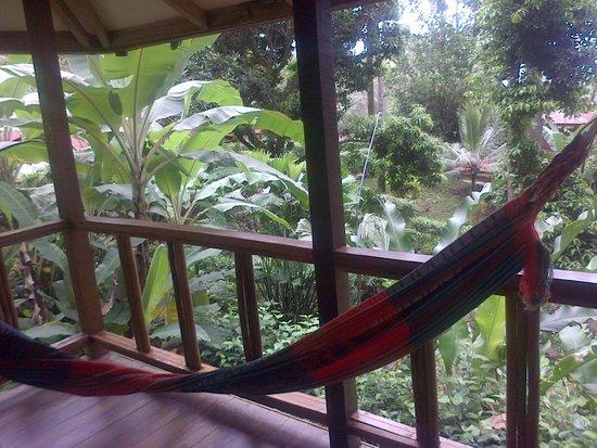 Samasati Retreat & Rainforest Sanctuary: habitacion