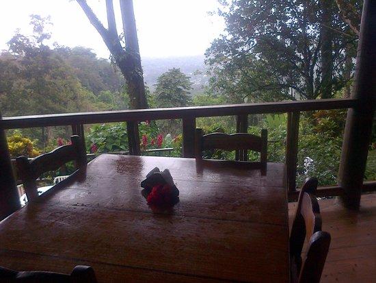 Samasati Retreat & Rainforest Sanctuary: comedor