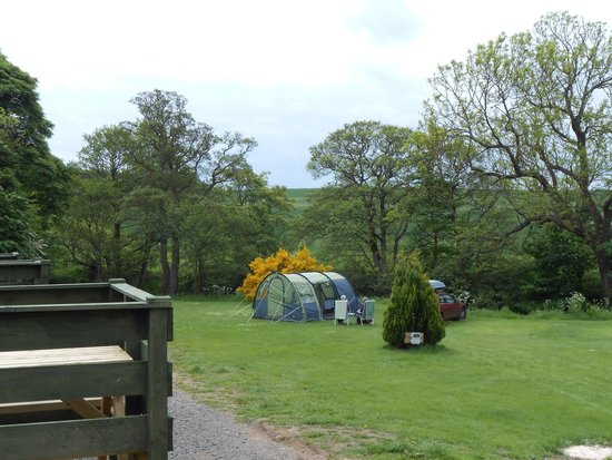 Budle Bay Campsite: View From Sheds