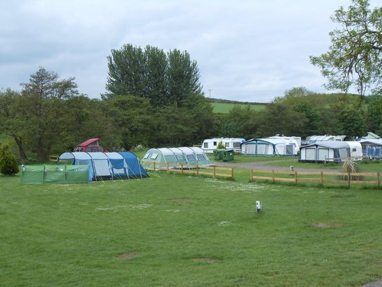 View Across Site - Picture of Budle Bay Campsite, Waren Mill