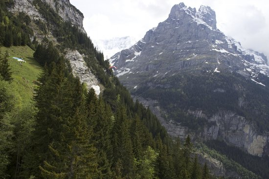 Grindelwald, Suíça: View from the gondola.