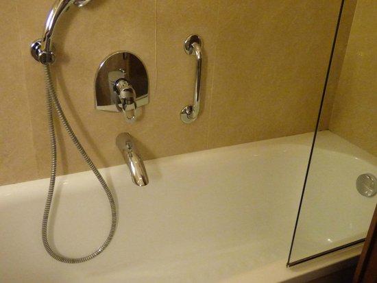 FH Villa Fiesole Hotel: Shower