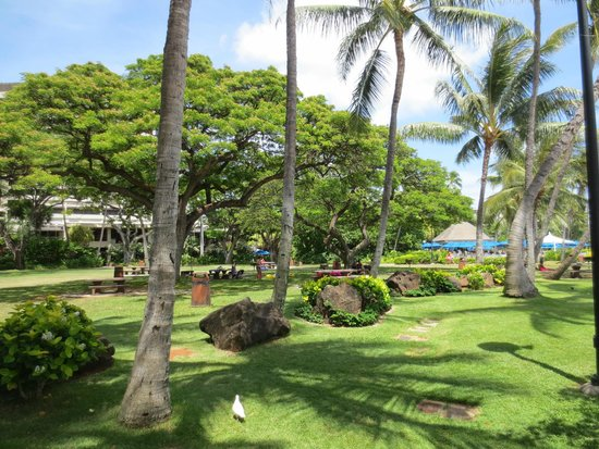 Fort Derussy Beach Park, seen from by the beach