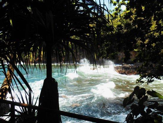 Hawaii Tropical Botanical Garden: Crashing Powerful Surf.