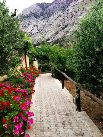 Eleonas: truly beautiful grounds