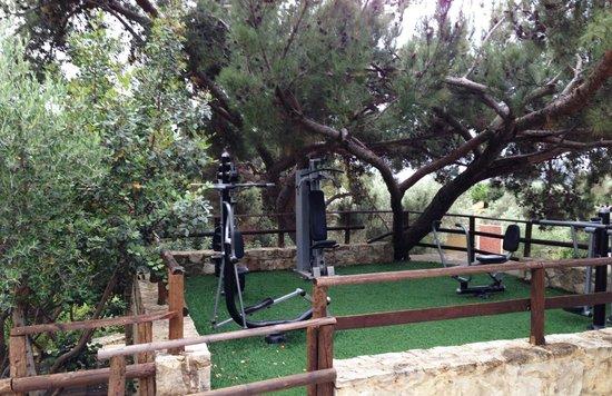 Eleonas : the workout area