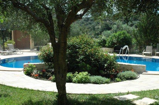 Eleonas: the pool