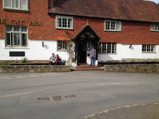 The Cat Inn: Cat Inn