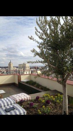 Hotel Regina: roof garden